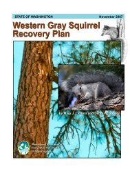 Western Gray Squirrel Recovery Plan - Washington Department of ...