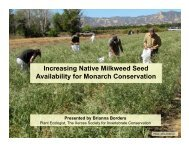 Increasing the availability of native milkweed - Monarch Lab