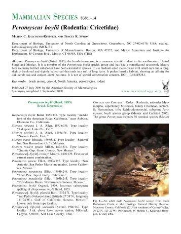 Peromyscus boylii (Rodentia: Cricetidae) - BioOne