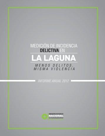 midlag-informe-anual-2012-marzo-2013
