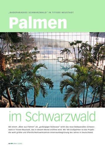 Palmen im Schwarzwald DEGA Dezember 2010 - Jürgen ...