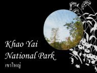 Khao Yai National Park - The University of Hong Kong