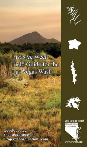 Invasive Weed Field Guide for the Las Vegas Wash