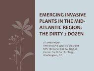 Emerging Invasive Plants in the Mid-Atlantic Region - EDDMapS