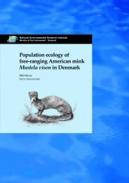 Population ecology of free-ranging American mink Mustela vison in ...