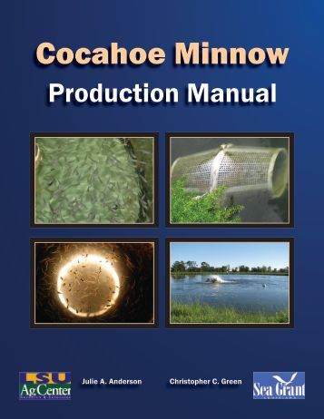 Cocahoe Minnow - The LSU AgCenter
