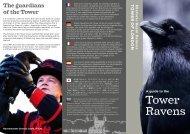 Ravens leaflet