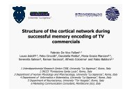 Structure of the cortical network during successful memory encoding ...