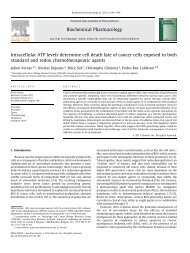 Intracellular ATP levels determine cell death fate of - Universidad ...