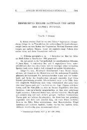 A Magyar Természettudományi Múzeum évkönyve 2. (Budapest 1904)