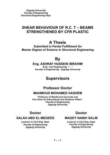 Supervisor thesis