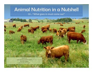 Animal Nutrition in a Nutshell - Lake County Extension