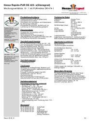 Hesse Rapido-PUR DE 423- x(Glanzgrad) - Hesse Lignal