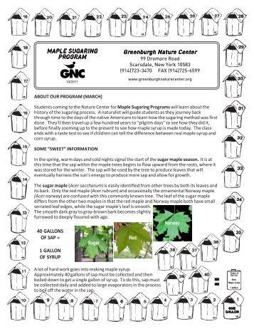 Maple Sugaring Teacher's Guide - Greenburgh Nature Center