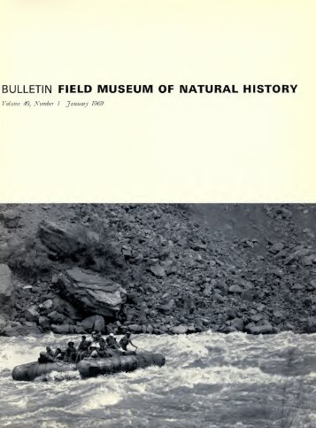 bulletin field museum of natural history - University Library