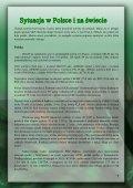 niedzielna analiza rynku [pdf, 1574kb] - Inwestycje - Page 4