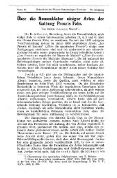 über die Nomenklatur einiger Arten der Gattung Procris Fabr.