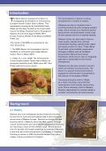 Beaver-Summary-report-English - Page 5