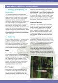 Beaver-Summary-report-English - Page 7