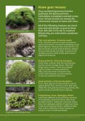 Download this publication - Plantlife - Page 4