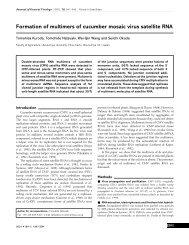 Formation of multimers of cucumber mosaic virus satellite RNA