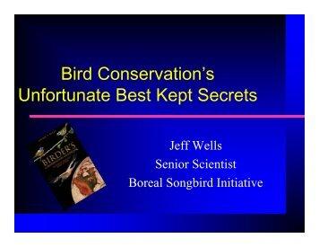 Dr. Jeff Wells, Senior Scientist, Boreal Songbird Initiative