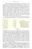 Dimorphotheca pluvialis (L.) - Seite 6