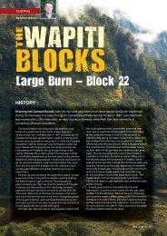 Large Burn - Rod & Rifle