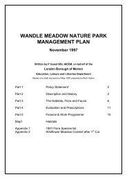Wandle Meadow Nature Park - Management Plan - Merton Council