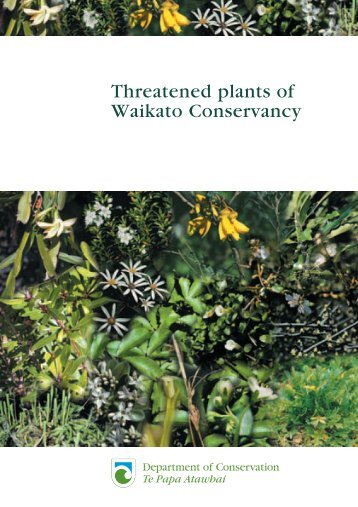 Threatened plants of Waikato Conservancy - Department of ...