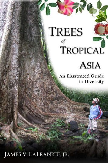 An Illustrated Guide to Diversity - Trees of Tropical Asia LaFrankie