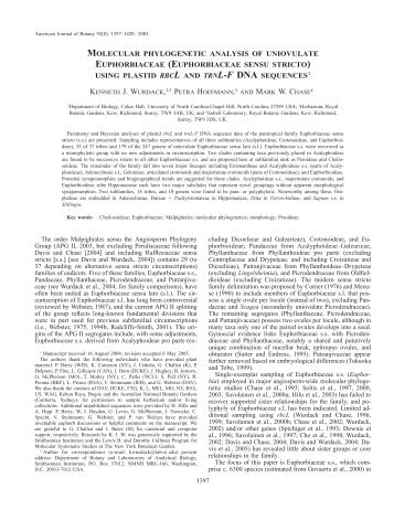(euphorbiaceae sensu stricto) using plastid rbcl and trnl-f dna sequ