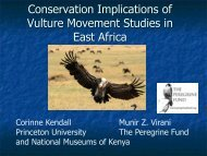 Assessing Movement Patterns for Threatened Vultures in East