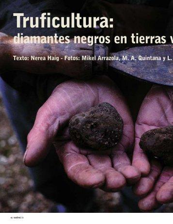 diamantes negros en tierras v - HABE