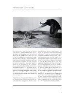 Joseph Beuys - Seite 7