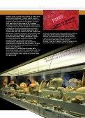 La Seconda fondazione di Spina - Museo Archeologico Nazionale ... - Page 4