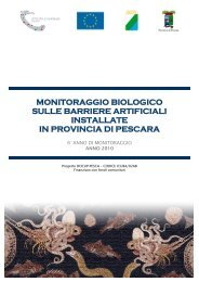 anno 2010 - Regione Abruzzo