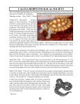 The League of Florida Herpetological Societies - Central Florida ... - Page 7