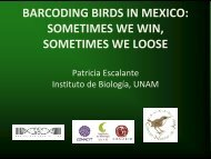 Barcoding Birds of Mexico