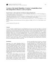 Cestodes of the family Dilepididae - Instituto de Biología - UNAM