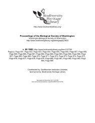 A new genus of tropicbird (Pelecaniformes; Phaethontidae) from the ...