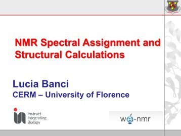 Spectral assignment and structure calculation - EMBL Hamburg