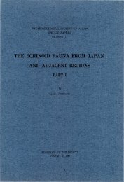 the echinoid fauna from japan and adjacent regions part i