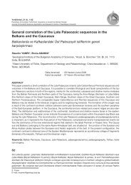 General correlation of the Late Palaeozoic sequences in the ...