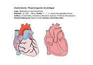 Anatomische / Physiologische Grundlagen