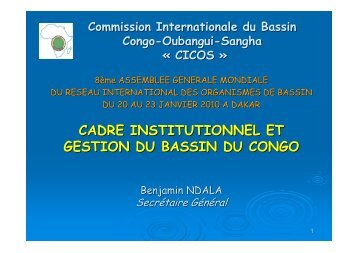 CADRE INSTITUTIONNEL ET GESTION DU BASSIN DU CONGO