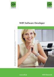 WIFI Software Developer