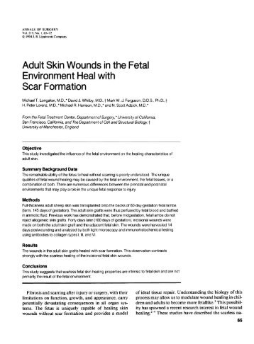Adult Skin Wounds in the Fetal Environment Heal with Scar Formation