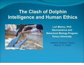 Dolphins - Abrupt Media