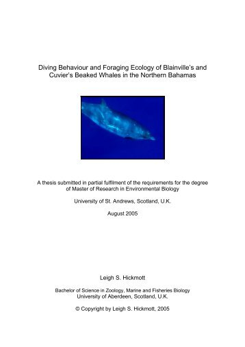 Diving Behaviour and Foraging Ecology of Blainville's and Cuvier's ...